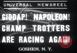 Image of Hambletonian Goshen New York USA, 1937, second 1 stock footage video 65675029463