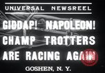 Image of Hambletonian Goshen New York USA, 1937, second 2 stock footage video 65675029463
