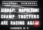 Image of Hambletonian Goshen New York USA, 1937, second 4 stock footage video 65675029463