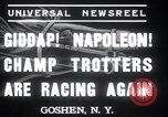 Image of Hambletonian Goshen New York USA, 1937, second 5 stock footage video 65675029463