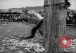 Image of tree-chopping and sawing contests Bavaria Germany, 1967, second 12 stock footage video 65675029474