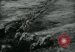 Image of World War I events France, 1918, second 9 stock footage video 65675029620
