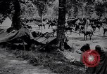 Image of Indian cavalry encamp France, 1918, second 8 stock footage video 65675029636