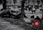 Image of Indian cavalry encamp France, 1918, second 11 stock footage video 65675029636