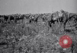 Image of Indian Cavalry France, 1918, second 3 stock footage video 65675029641