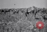 Image of Indian Cavalry France, 1918, second 4 stock footage video 65675029641