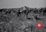 Image of Indian Cavalry France, 1918, second 6 stock footage video 65675029641