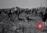 Image of Indian Cavalry France, 1918, second 8 stock footage video 65675029641