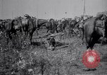 Image of Indian Cavalry France, 1918, second 9 stock footage video 65675029641