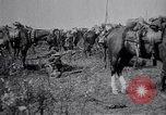 Image of Indian Cavalry France, 1918, second 10 stock footage video 65675029641