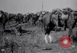 Image of Indian Cavalry France, 1918, second 11 stock footage video 65675029641