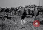 Image of Indian Cavalry France, 1918, second 12 stock footage video 65675029641