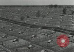 Image of Fromm Brothers Nieman Company silver fox fur farm Thiensville Wisconsin USA, 1934, second 4 stock footage video 65675029774