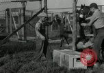 Image of Fromm Brothers Nieman Company silver fox fur farm Thiensville Wisconsin USA, 1934, second 23 stock footage video 65675029774