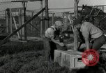 Image of Fromm Brothers Nieman Company silver fox fur farm Thiensville Wisconsin USA, 1934, second 29 stock footage video 65675029774