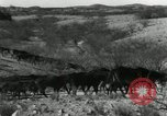 Image of untamed horses Sasabe Arizona USA, 1934, second 7 stock footage video 65675029776