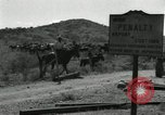 Image of untamed horses Sasabe Arizona USA, 1934, second 11 stock footage video 65675029776