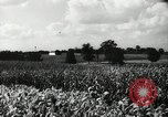 Image of farming activities Southville Kentucky USA, 1950, second 6 stock footage video 65675029785