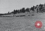 Image of American buffalo round-up South Dakota United States, 1934, second 4 stock footage video 65675029846