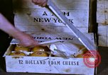 Image of cheese and tulip bulbs Netherlands, 1940, second 9 stock footage video 65675029904