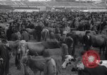 Image of refugee town Caldas da Rainha Portugal, 1943, second 12 stock footage video 65675029918
