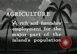 Image of coconut palms Puerto Rico, 1941, second 1 stock footage video 65675029922