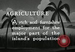 Image of coconut palms Puerto Rico, 1941, second 4 stock footage video 65675029922