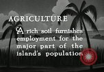Image of coconut palms Puerto Rico, 1941, second 6 stock footage video 65675029922