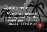 Image of coconut palms Puerto Rico, 1941, second 7 stock footage video 65675029922