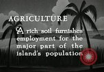 Image of coconut palms Puerto Rico, 1941, second 8 stock footage video 65675029922