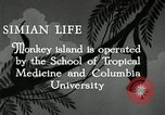 Image of monkey island Puerto Rico, 1941, second 2 stock footage video 65675029923