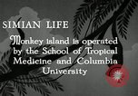 Image of monkey island Puerto Rico, 1941, second 7 stock footage video 65675029923