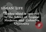 Image of monkey island Puerto Rico, 1941, second 8 stock footage video 65675029923