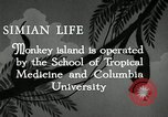 Image of monkey island Puerto Rico, 1941, second 9 stock footage video 65675029923