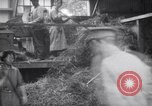 Image of chaff cut United Kingdom, 1915, second 4 stock footage video 65675029964