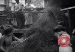 Image of chaff cut United Kingdom, 1915, second 8 stock footage video 65675029964