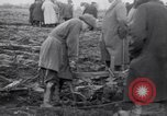 Image of women plough Surrey England, 1915, second 9 stock footage video 65675029966