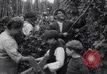Image of hoppers of kent Kent England, 1915, second 11 stock footage video 65675029967