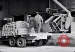 Image of filled sacks United States USA, 1938, second 3 stock footage video 65675029996