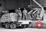 Image of filled sacks United States USA, 1938, second 5 stock footage video 65675029996