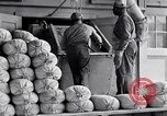 Image of filled sacks United States USA, 1938, second 6 stock footage video 65675029996