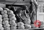 Image of filled sacks United States USA, 1938, second 8 stock footage video 65675029996