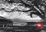 Image of AEF barracks Trinidad, 1942, second 2 stock footage video 65675030207