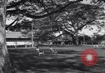 Image of AEF barracks Trinidad, 1942, second 8 stock footage video 65675030207