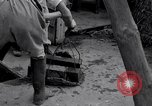 Image of gold and silver bars Japan, 1945, second 10 stock footage video 65675030210