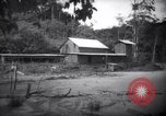 Image of prison labor Devil's Island French Guiana, 1939, second 3 stock footage video 65675030232