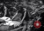 Image of lumbering operations Devil's Island French Guiana, 1939, second 11 stock footage video 65675030233