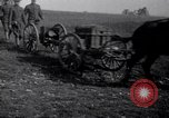 Image of Vickers Q.F. Mark II 40mm Gun. France, 1917, second 7 stock footage video 65675030263