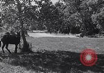 Image of cargo carrier Aberdeen Maryland USA, 1954, second 10 stock footage video 65675030299