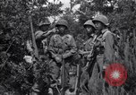 Image of Japanese-American soldiers Italy, 1944, second 6 stock footage video 65675030358